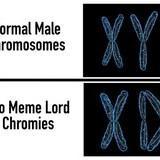 Chromies