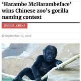 A regal name