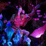 avatar shaman