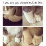 feet mittens