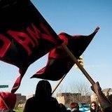 BAMN Are A Violent Cult