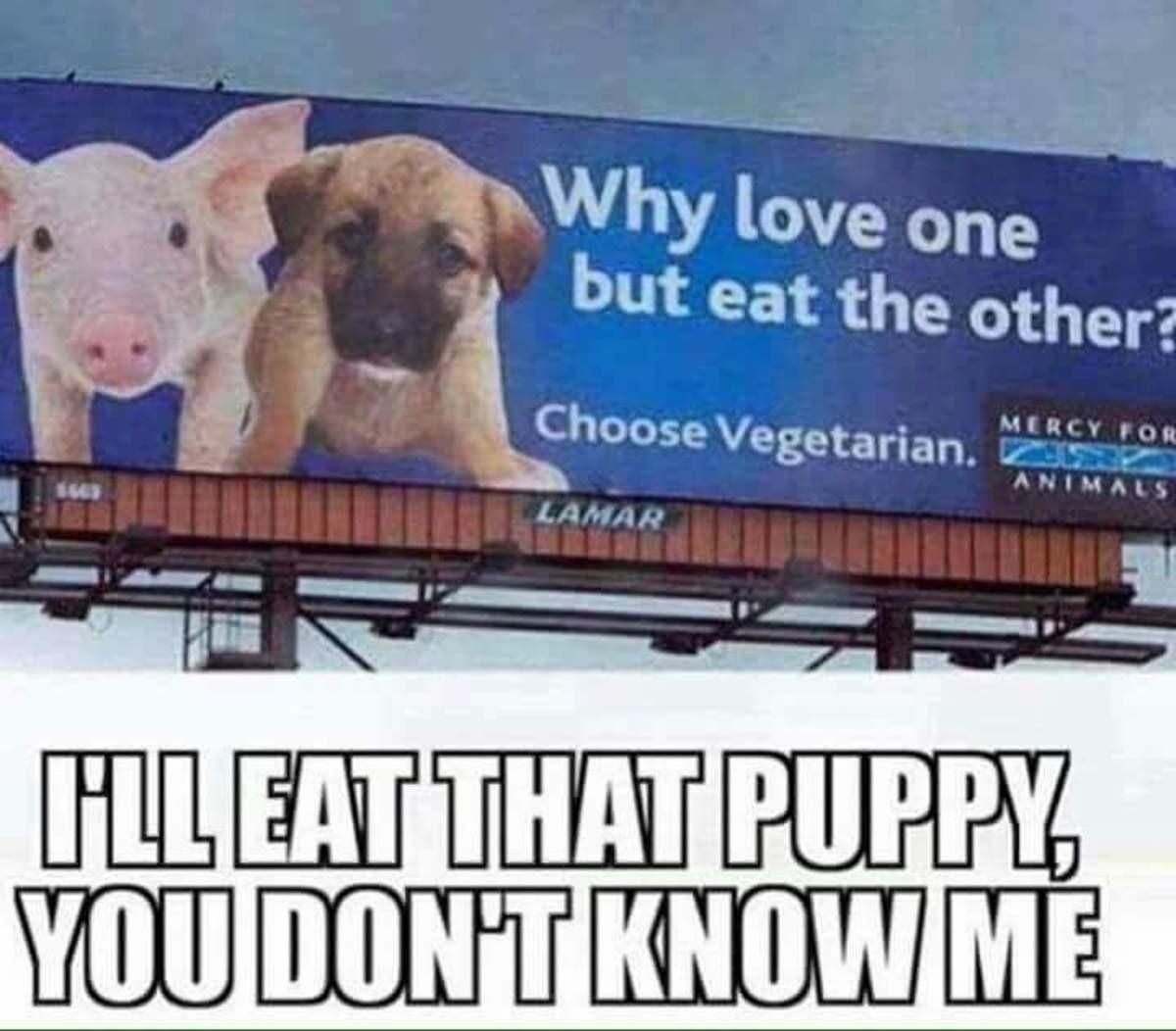 Bacon n dog. . Bacon n dog