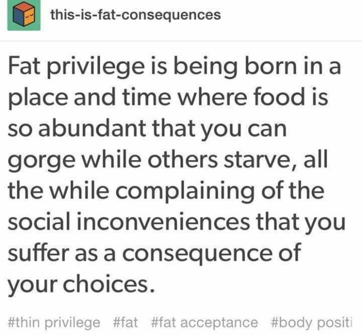 Fat Privilege. . Fat Privilege