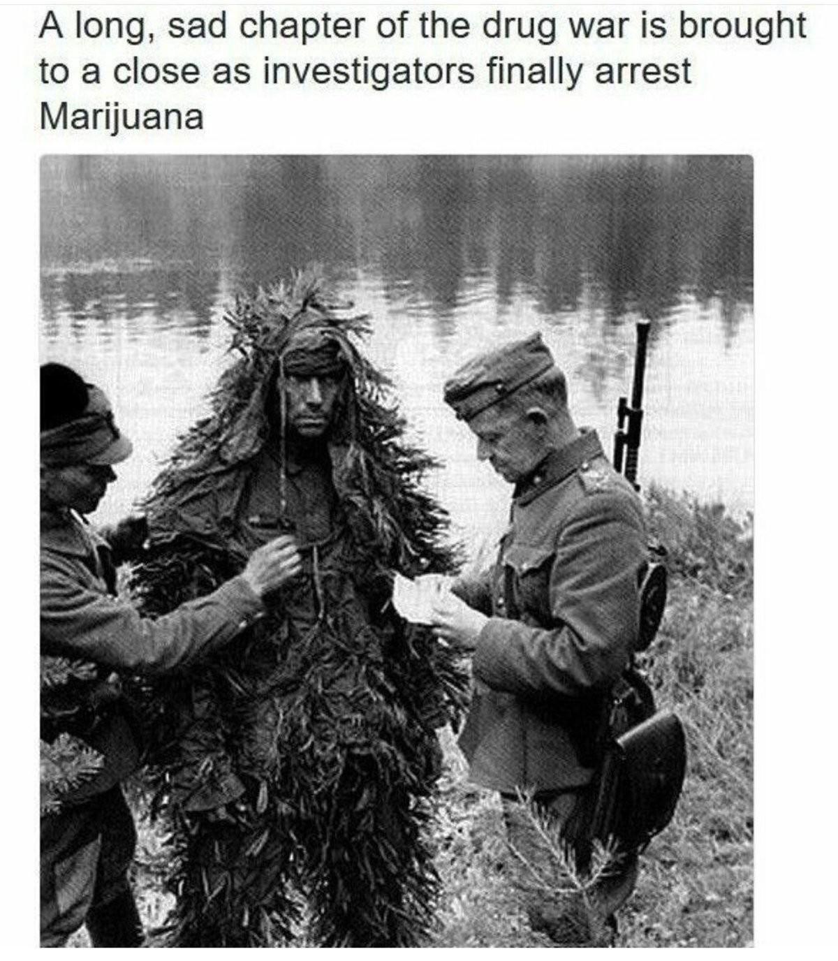 No more weed. .. OH NO! No more weed OH NO!