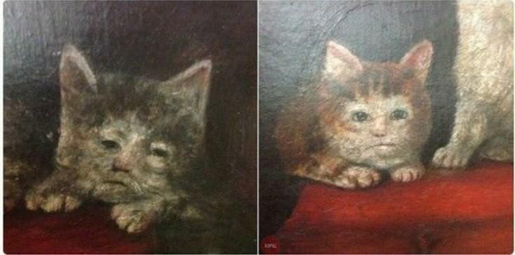 renaissance cat. . renaissance cat