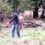Australian Fight