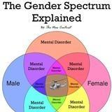 gender spectrum explained
