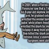 The Florida Man we need, not the Florida Man we deserve
